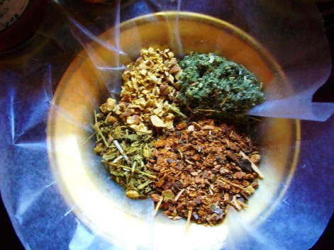 The four herbs in Dr. B's herbal cough syrup: licorice root, horehound, wild cherry bark, lobelia