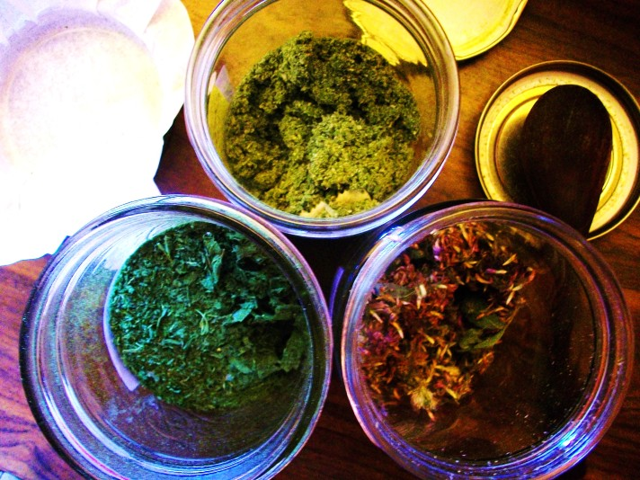 sustainably, ethically, beautifully wildcrafted nettle, raspberry leaf and red clover for my Mountain Mama blended herbals
