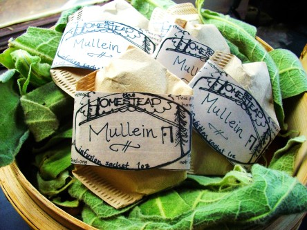 ready to use mullein infusion sachets
