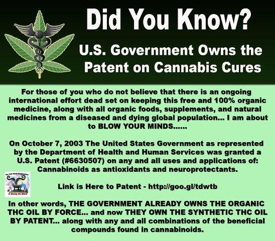 cannabis conspiracy