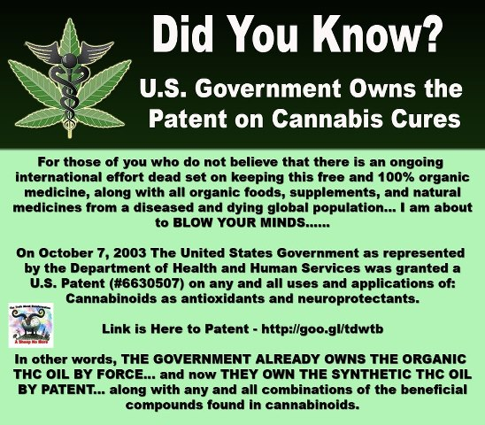 cannabis conspiracy