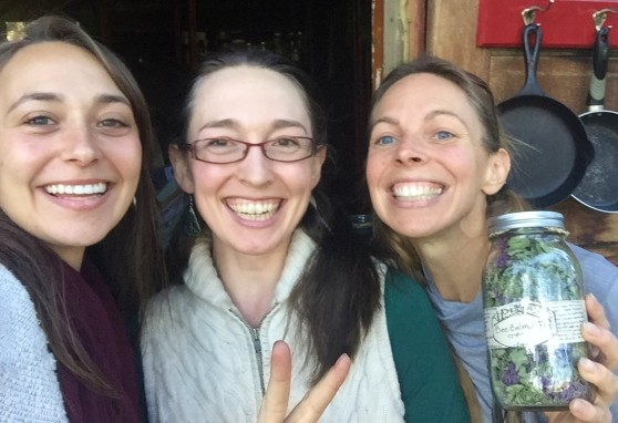 The Holistic Homestead offers ethically, sustainably and beautifully wildcrafted herbs to Kate and Dawn of Dynamic Roots